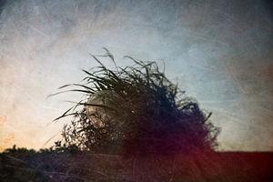 海岸印象-400-8.jpg