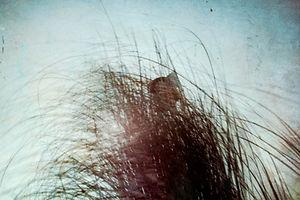 海岸印象-400-18.jpg