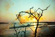 coastimpressions-900-17.jpg