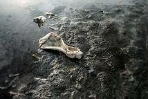 海岸印象-400-29.jpg