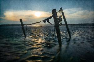 海岸印象-400-4.jpg