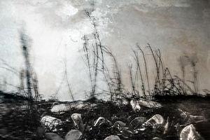 coastimpressions-360-39.jpg