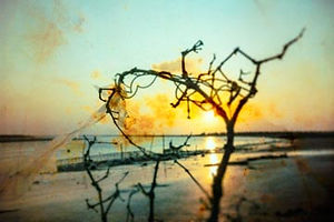coastimpressions-360-17.jpg