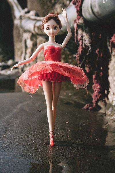 水芭蕾-2-600--3.jpg