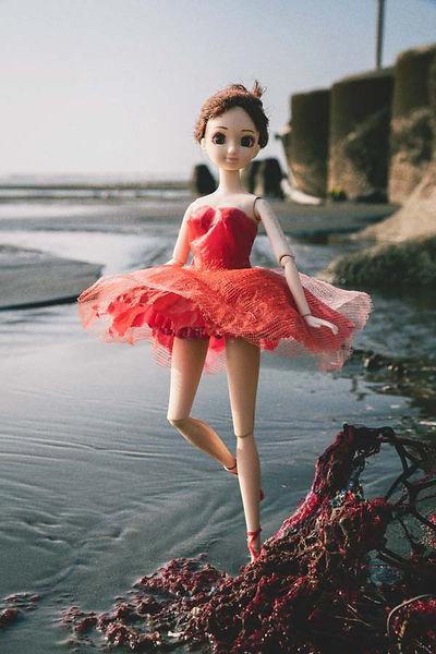 水芭蕾-2-600-.jpg
