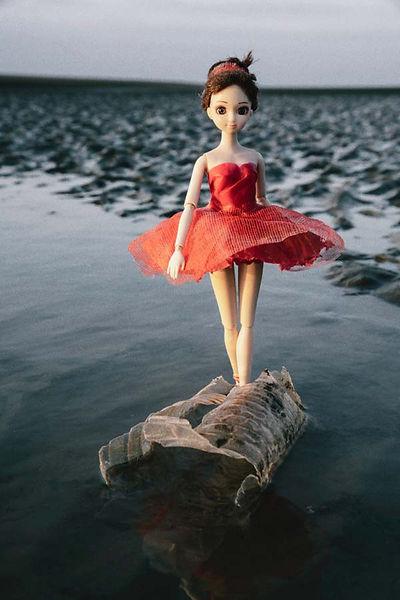 水芭蕾-2-600--6.jpg