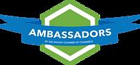 Ambassadors-w800.png