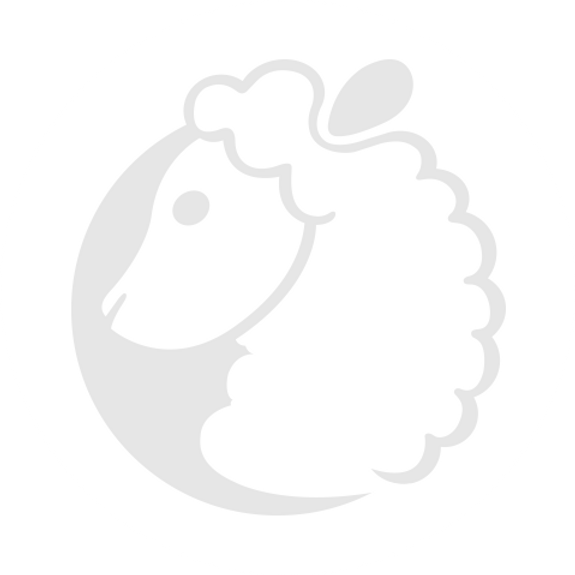 Icon Logo Faded.png