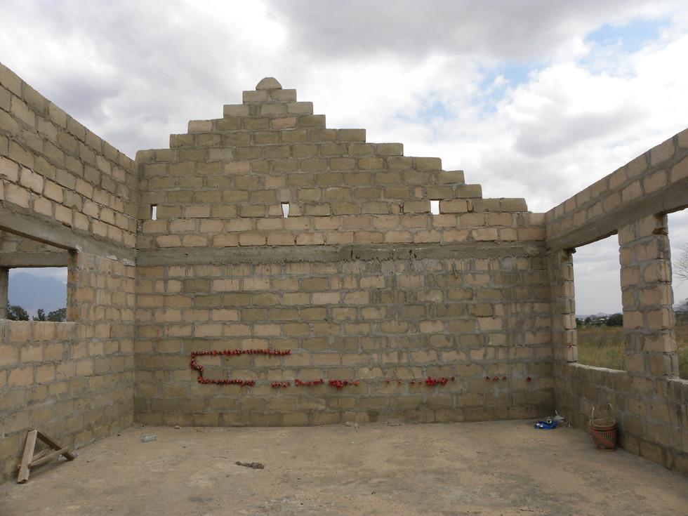 Kapok wall 2013