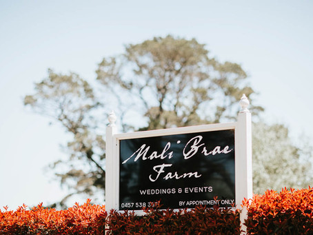 Mali Brae Farm Wedding / Krista & Michael // Daniel Kukec Photography.