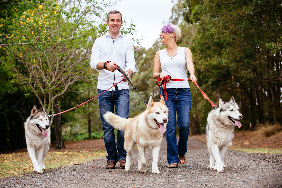 Sydney family photography with a couple and three dogs in the park.