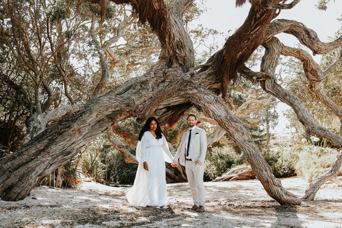 Creative wedding photography: a couple hold hands under an old tree at the beach.