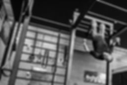 Wilco6192.jpg