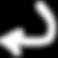 sqlbnl-curved-arrow-white_04i04i04i04i00