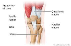 Osgood-Schlatter, What is it and how do we treat it?