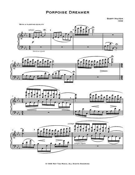 Porpoise Dreamer (Hiltzik)-page-001.jpg