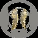 logo cherubino.png