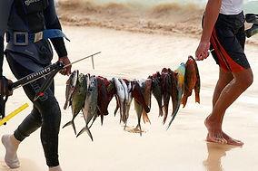 Fishing 3.jpg