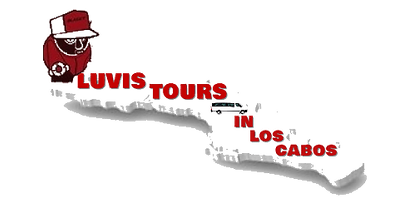 LUVIS TOURS LOW TRANSPARENT000.png