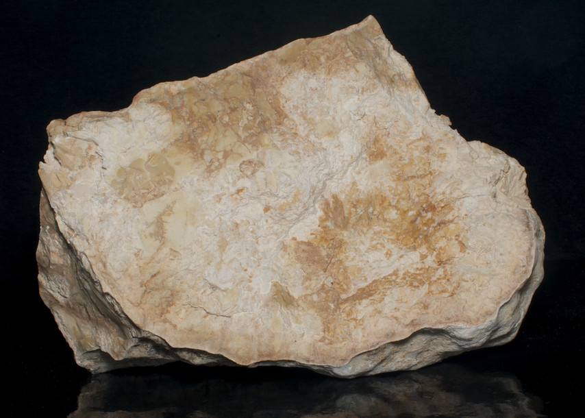 Limestone, Mount Shaul, Israel