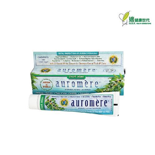 印度傳統草本牙膏 (薄荷) Herbal Toothpaste (Fresh Mint)