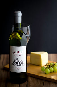 Apu Peruvian Wine- Sauvignon Blanc. High altitude wine, craft wine, winery peru