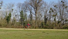 Ecurie Edouard Monfort..JPG