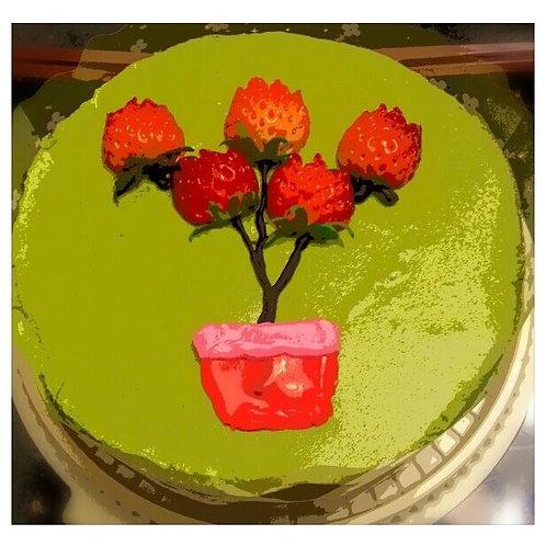 Green Tea Red Bean Cheesecake