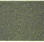Internal Rhythm2009-46 73.3x117.3cm Acry