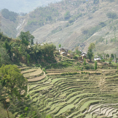 Terraces in the villages, Nepal 2015