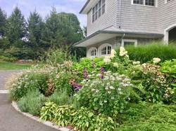 Landscape Design | Local Business