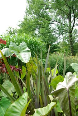 Natural Landscaping | Garden Design