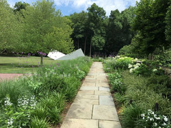 Specimen Trees | Stone | Garden