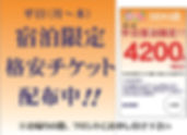 クーポン配布中 SEKI A4.jpg