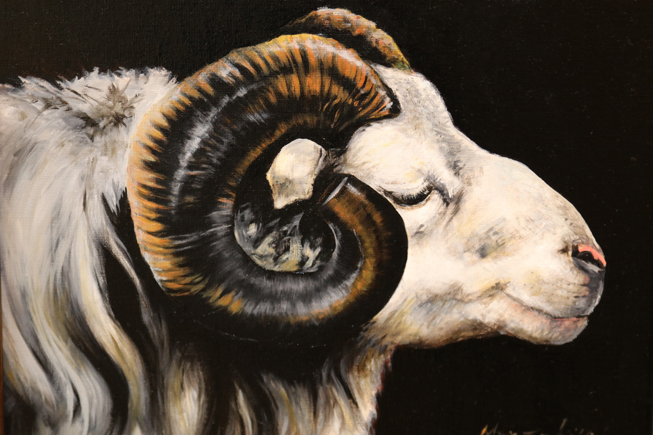 Killilea_Ram_11x14_Oil_$1200_2020