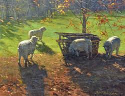 Bill Farnsworth