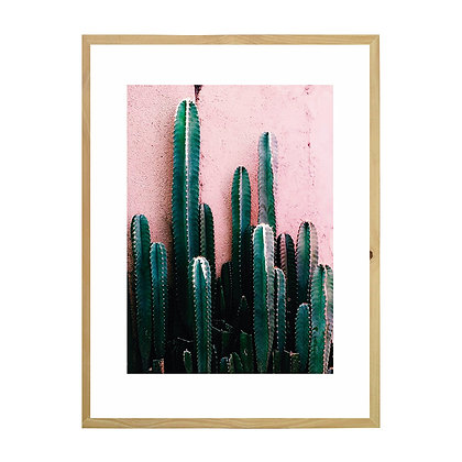 Cuadro Cactus Rosado