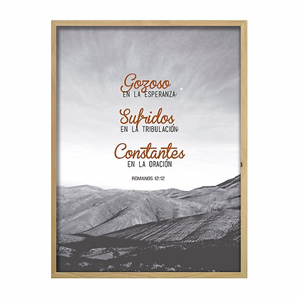Cuadro Biblia Romanos 12:12