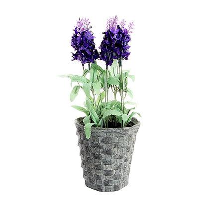 Matera plástica con flores