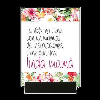 Cuadro Madre Linda