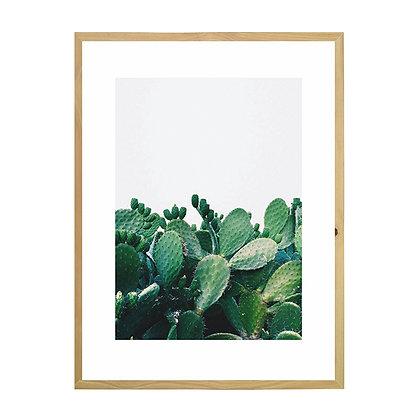 Cuadro Cactus Gris