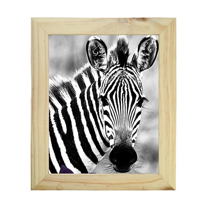 Cuadro Pino Zebra