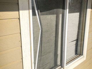 Window and Window Screen Repairs and Replacement | Loveland | Fort Collins | Greeley | Longmont