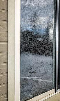 window repair fort collins