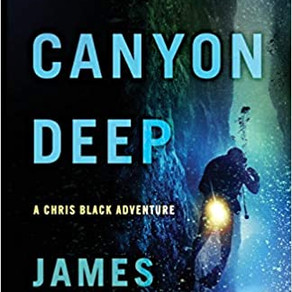 Book Review: INTO A CANYON DEEP by James Lindholm