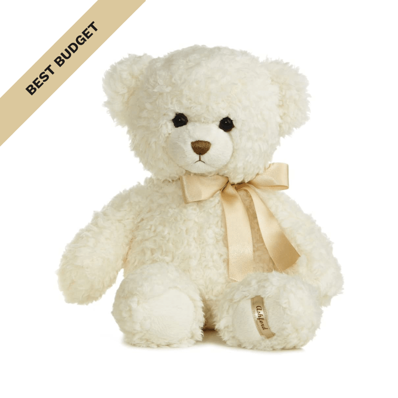 Best Budget: Aurora World Ashford Teddy Bear