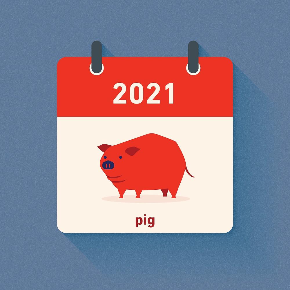 Pig Zodiac in 2021
