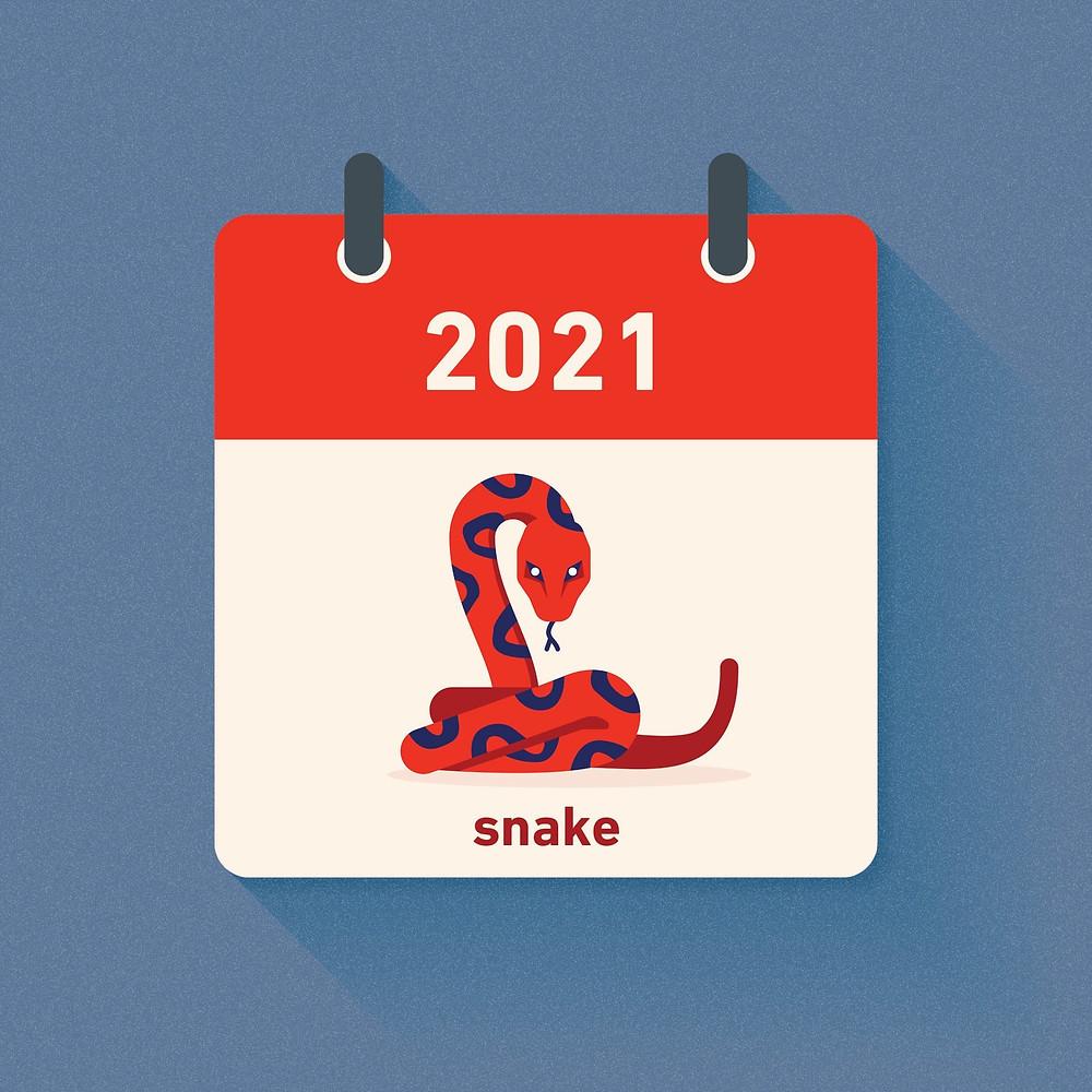 Snake Zodiac in 2021