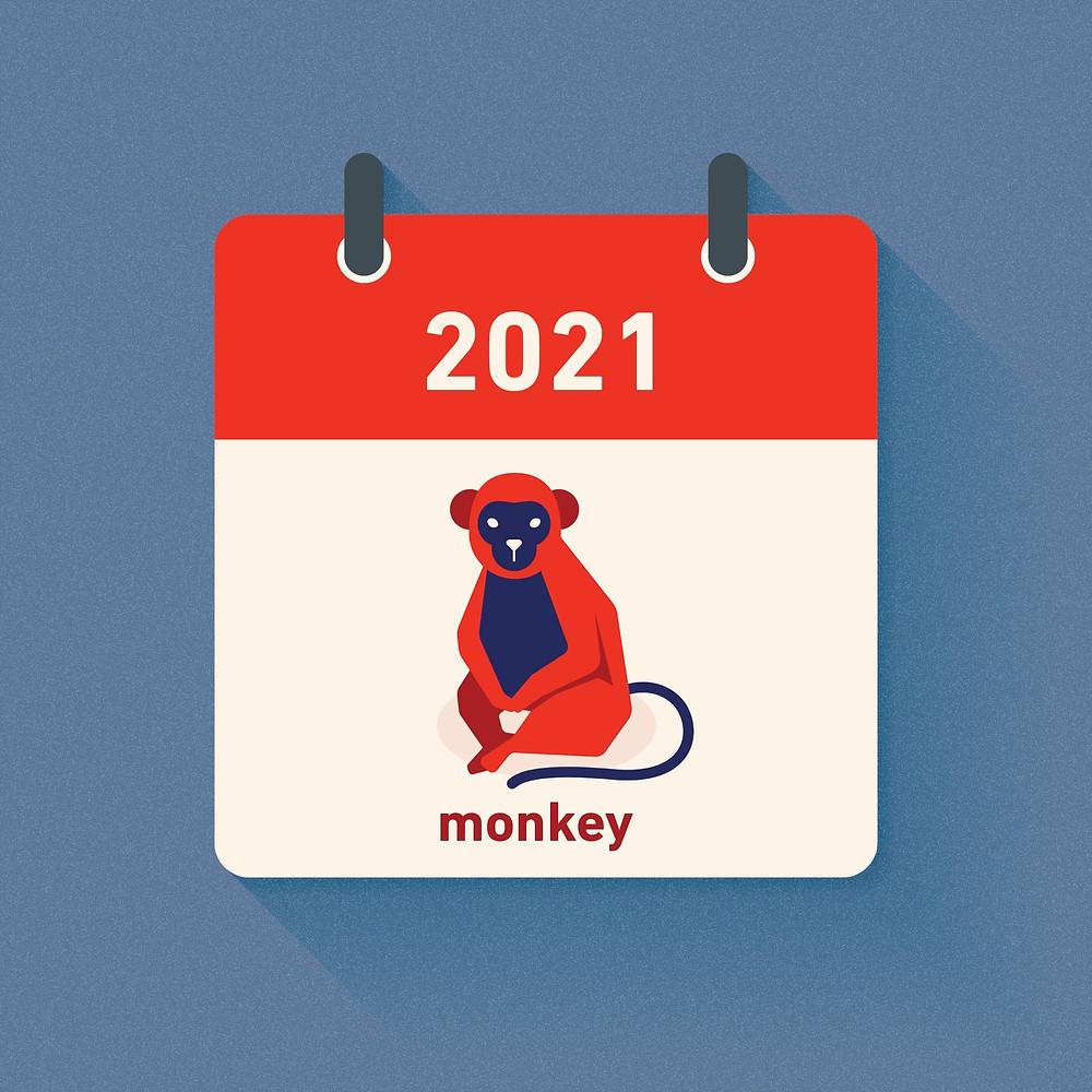 Monkey Zodiac in 2021