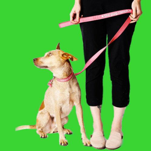 Custom Printed Fabric Dog Lead